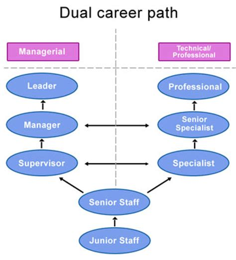 Public or corporate: Which accounting career path is right